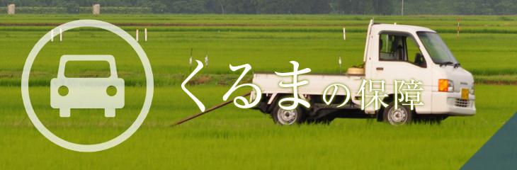 JA共済 くるまの保障(自動車共済、自動車保険)